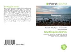 Bookcover of Revillagigedo Islands