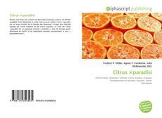 Bookcover of Citrus ×paradisi