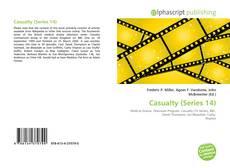 Casualty (Series 14)的封面