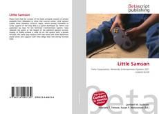 Bookcover of Little Samson