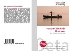 Narayan Sadashiv Hosmane kitap kapağı