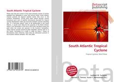Bookcover of South Atlantic Tropical Cyclone