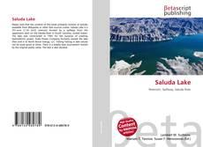 Bookcover of Saluda Lake