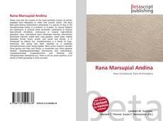 Rana Marsupial Andina kitap kapağı