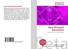 Rana Marsupial Bromelícola kitap kapağı