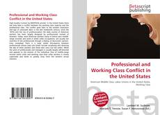 Professional and Working Class Conflict in the United States的封面