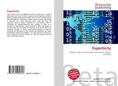 Bookcover of Experticity
