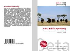 Bookcover of Nana Effah-Apenteng