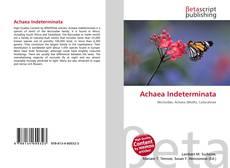 Borítókép a  Achaea Indeterminata - hoz