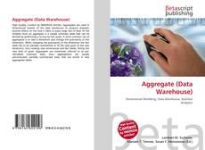 Capa do livro de Aggregate (Data Warehouse)