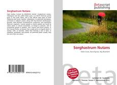 Bookcover of Sorghastrum Nutans