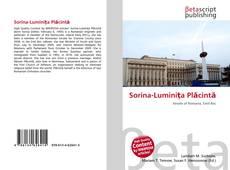 Buchcover von Sorina-Luminiţa Plăcintă