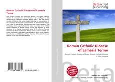 Bookcover of Roman Catholic Diocese of Lamezia Terme
