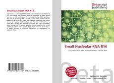 Couverture de Small Nucleolar RNA R16
