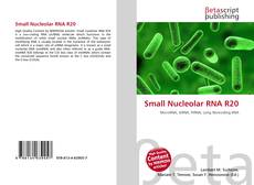 Couverture de Small Nucleolar RNA R20