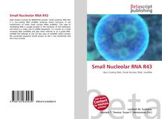 Bookcover of Small Nucleolar RNA R43