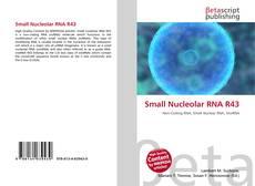 Couverture de Small Nucleolar RNA R43