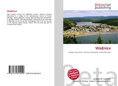 Bookcover of Woźnice