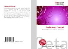 Bookcover of Trebizond Gospel