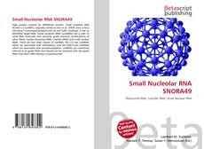 Buchcover von Small Nucleolar RNA SNORA49