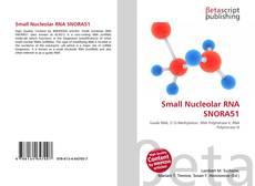 Couverture de Small Nucleolar RNA SNORA51