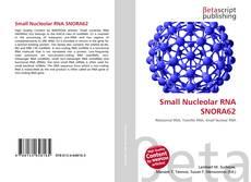 Buchcover von Small Nucleolar RNA SNORA62
