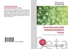 Buchcover von Small Nucleolar RNA SNORA64/SNORA10 Family