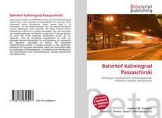 Bahnhof Kaliningrad Passaschirski kitap kapağı