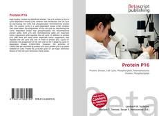 Portada del libro de Protein P16