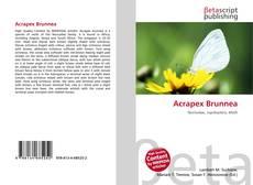 Couverture de Acrapex Brunnea