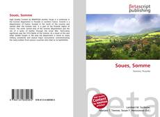 Buchcover von Soues, Somme