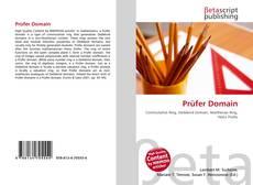Prüfer Domain的封面