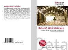Bahnhof Stein-Säckingen的封面
