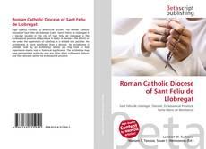 Bookcover of Roman Catholic Diocese of Sant Feliu de Llobregat