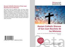Roman Catholic Diocese of San Juan Bautista de las Misiones的封面