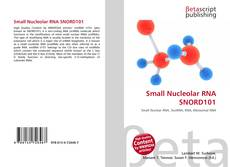 Couverture de Small Nucleolar RNA SNORD101