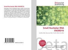 Couverture de Small Nucleolar RNA SNORD16