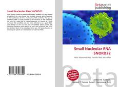 Couverture de Small Nucleolar RNA SNORD22