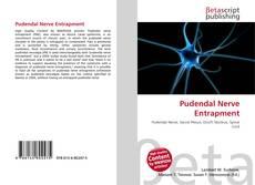 Bookcover of Pudendal Nerve Entrapment