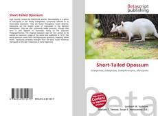 Обложка Short-Tailed Opossum