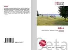 Buchcover von Salino