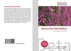 Borítókép a  Ranunculus Alismifolius - hoz