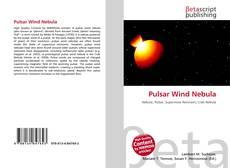 Capa do livro de Pulsar Wind Nebula