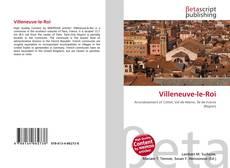 Capa do livro de Villeneuve-le-Roi