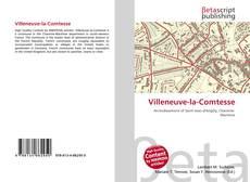 Capa do livro de Villeneuve-la-Comtesse