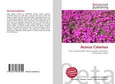 Bookcover of Acorus Calamus