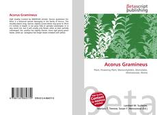 Bookcover of Acorus Gramineus