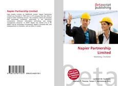 Napier Partnership Limited的封面