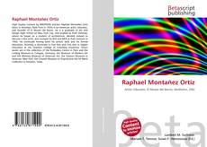 Raphael Montañez Ortíz kitap kapağı