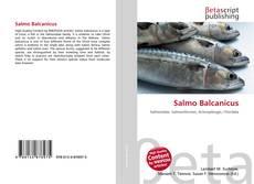 Borítókép a  Salmo Balcanicus - hoz